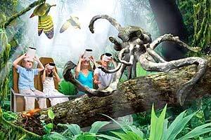 Animais do Futuro: Lula-Macaco