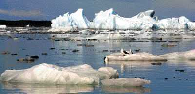 Derretimento geleiras. Aquecimento Global