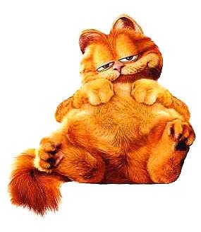 Garfield: Conheça a Versão Real do Gato Preguiçoso