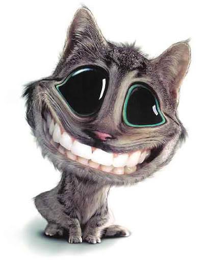 Gatinho Sorrindo