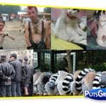 Fotos de Pessoas e Animais Gêmeos