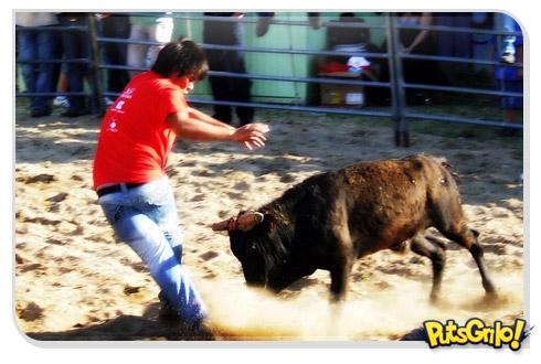 Piada do policial, do fazendeiro e do touro
