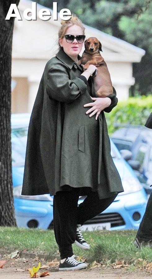 adele gravida As celebridades grávidas de 2012: as mamães famosas deste ano