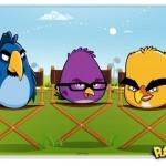 Angry Birds são os novos garotos-propaganda do Chrome